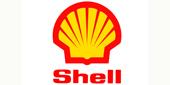 IGP創藝禮品|Gift|Shell