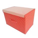 Clamshell Storage Box