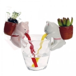 Animal Transparent Cup Plant