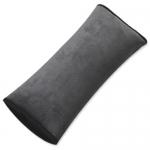Seatbelt Case