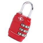 Customs Password Lock