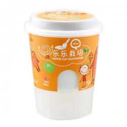 咖啡杯帶蓋盆栽