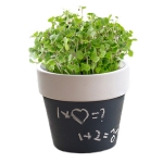 Nordic Style Blackboard Potted