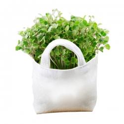 手提白色布袋小盆栽